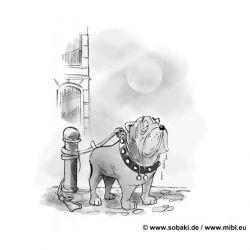 Die_Schlucht_der_freien_Hunde_6-31